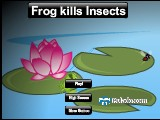 Frog kills Insects A Free Online Game