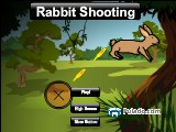 Rabbit Shooting A Free Online Game