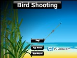 Bird Shooting A Free Online Game